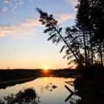 Рассвет на реке Пре