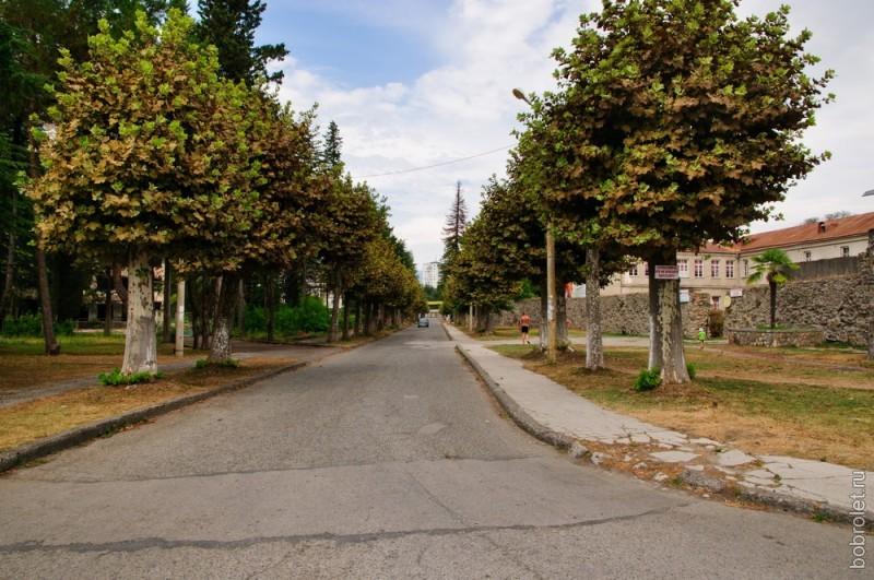 Платановая улица.